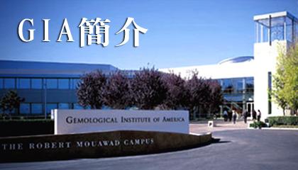 大亞鑽石GIA簡介,GIA美國寶石學院